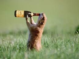 Beer - Weasel.jpg
