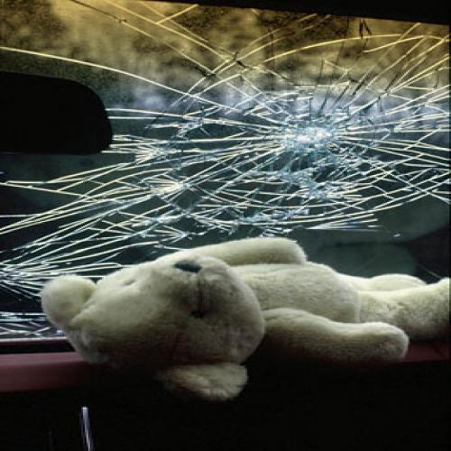 bear_accident.jpg