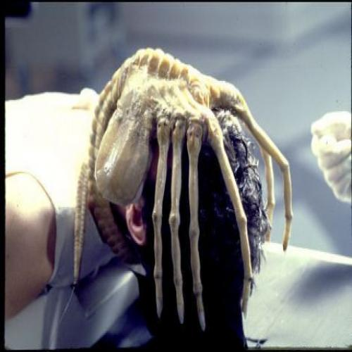 alien-facehugger.jpg